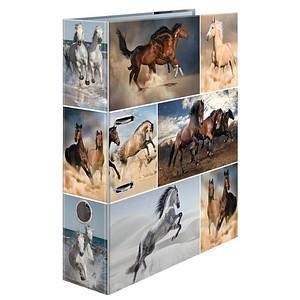 HERMA Motivordner Pferde 7,0 cm DIN A4