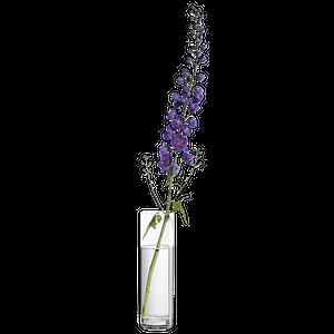 Blumentöpfe & Vasen