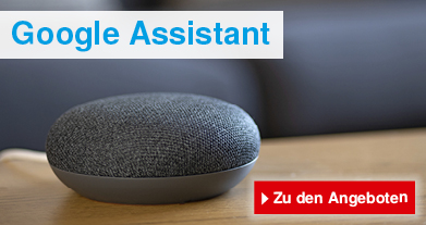 Smart Home Google Assistant